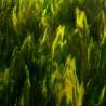 Szkło witrażowe 2121 szkło zielono żółte